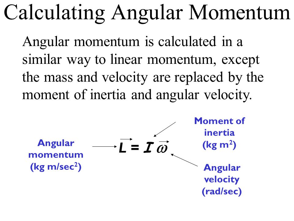Calculating Angular Momentum Angular momentum is calculated in a similar way to linear momentum, except the mass and velocity are replaced by the moment of inertia and angular velocity.