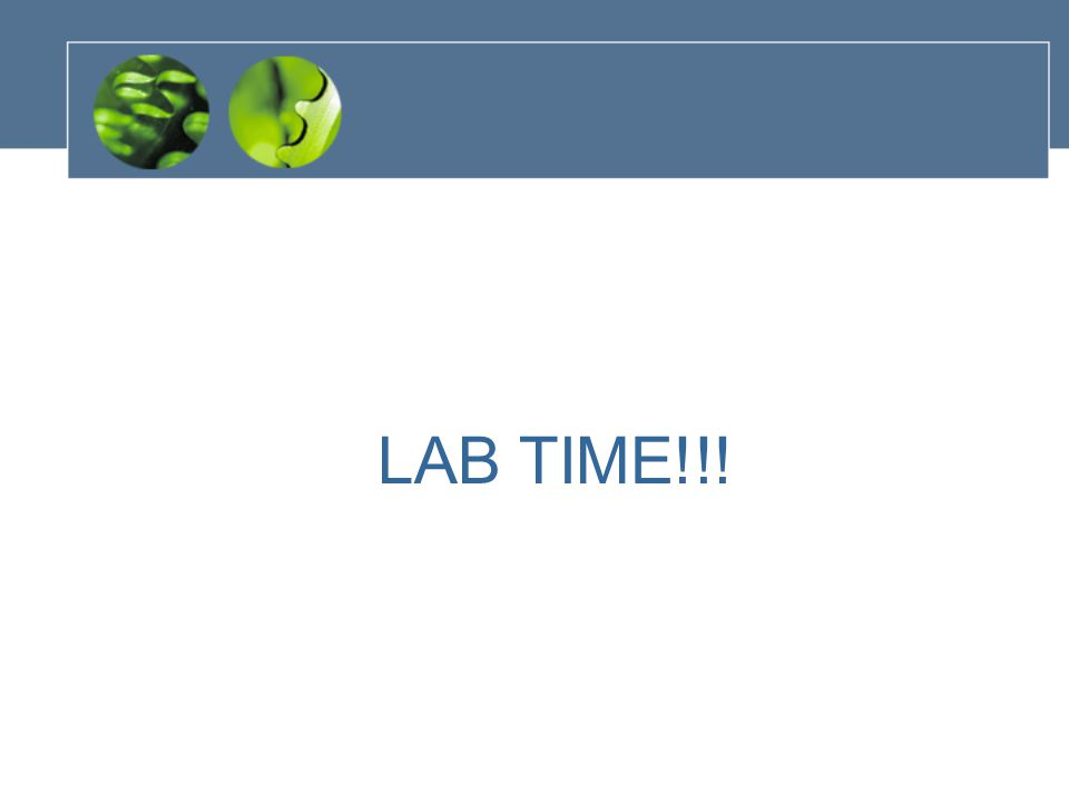 LAB TIME!!!