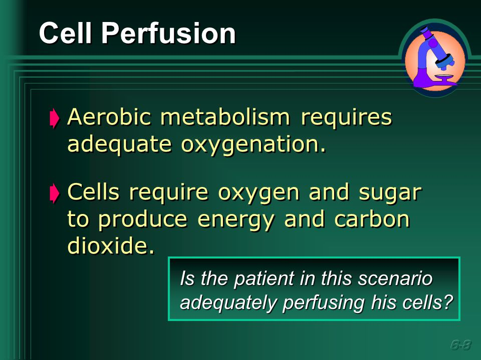Cell Perfusion  Aerobic metabolism requires adequate oxygenation.