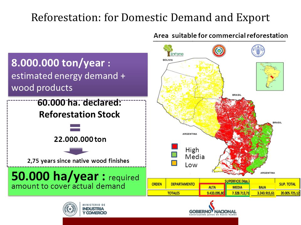 Reforestation: for Domestic Demand and Export 8.000.000 ton/year : estimated energy demand + wood products 50.000 ha/year : required amount to cover actual demand 60.000 ha.