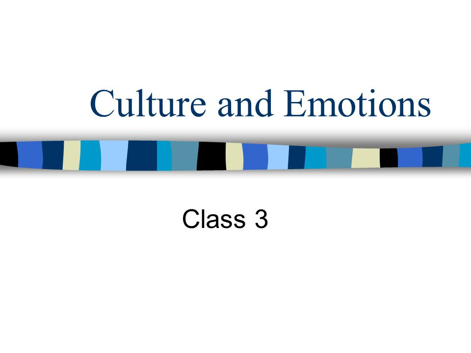 Culture and Emotions Class 3