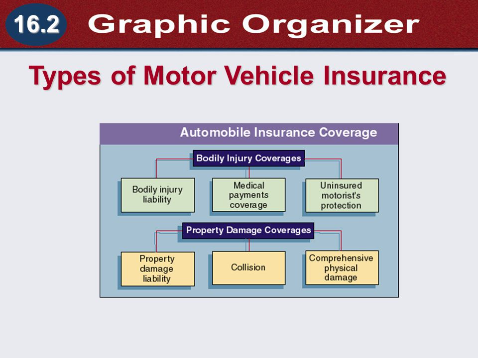 Understanding Business and Personal Law Motor Vehicle Insurance Section 16.2 Owning a Vehicle 16.2 Types of Motor Vehicle Insurance