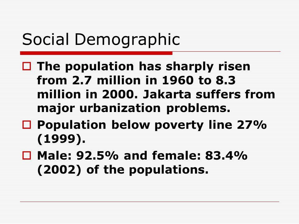Social Demographic  Variation of people are: Javanese (58%) Sundanese (15%) Batak(10%) Minang(8%) TiongHoa(5%) Others(4%)  Religion: Muslim (85%), Christian, Catholic, Hindu, Buddhist, and Kong Hu Chu.