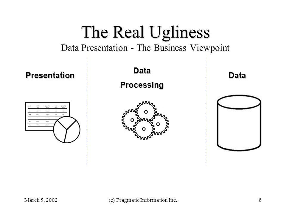 March 5, 2002(c) Pragmatic Information Inc.8 Data DataProcessing Presentation The Real Ugliness The Real Ugliness Data Presentation - The Business Viewpoint