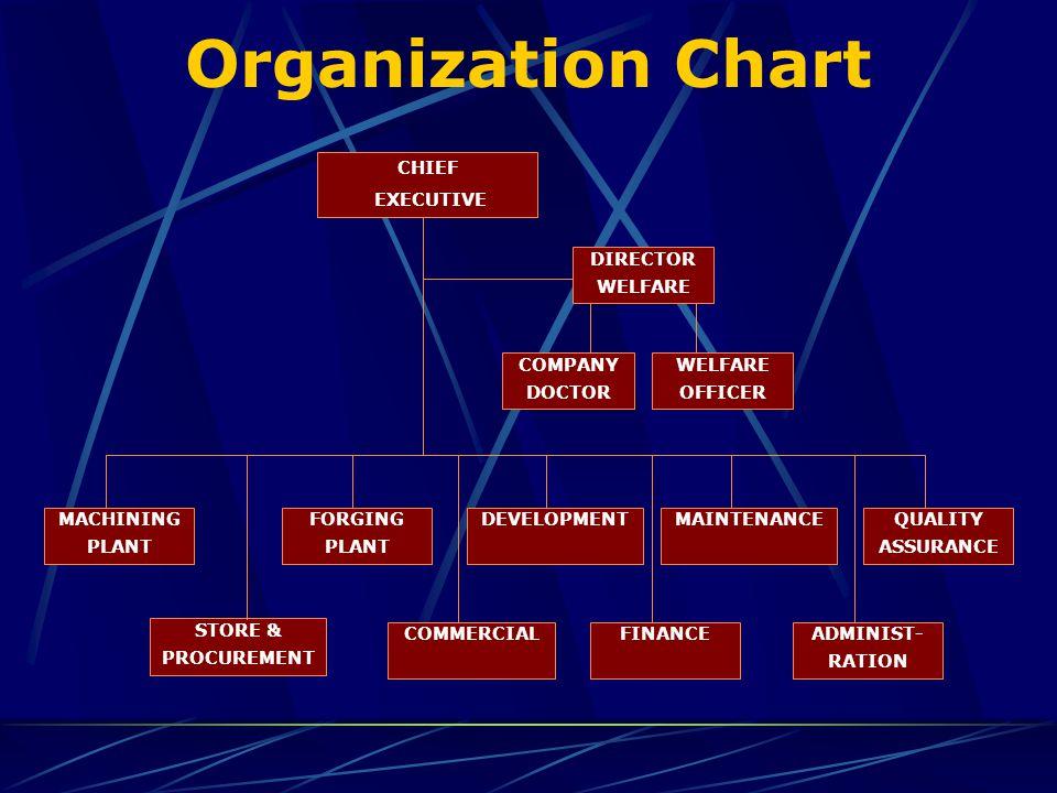 Organization Chart DEVELOPMENT STORE & PROCUREMENT FORGING PLANT MACHINING PLANT MAINTENANCEQUALITY ASSURANCE COMMERCIALFINANCEADMINIST- RATION CHIEF EXECUTIVE DIRECTOR WELFARE COMPANY DOCTOR WELFARE OFFICER
