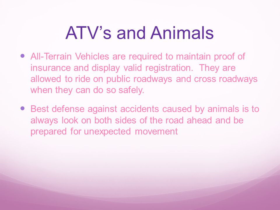 ATV's and Animals All-Terrain Vehicles are required to maintain proof of insurance and display valid registration.