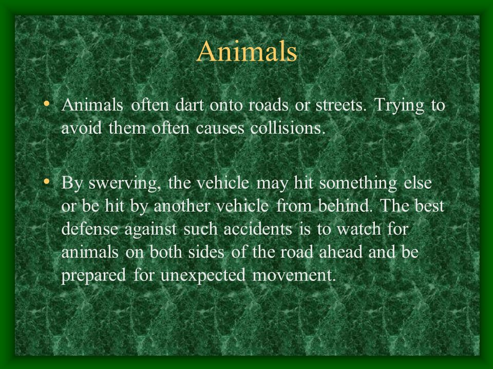 Animals Animals often dart onto roads or streets. Trying to avoid them often causes collisions.