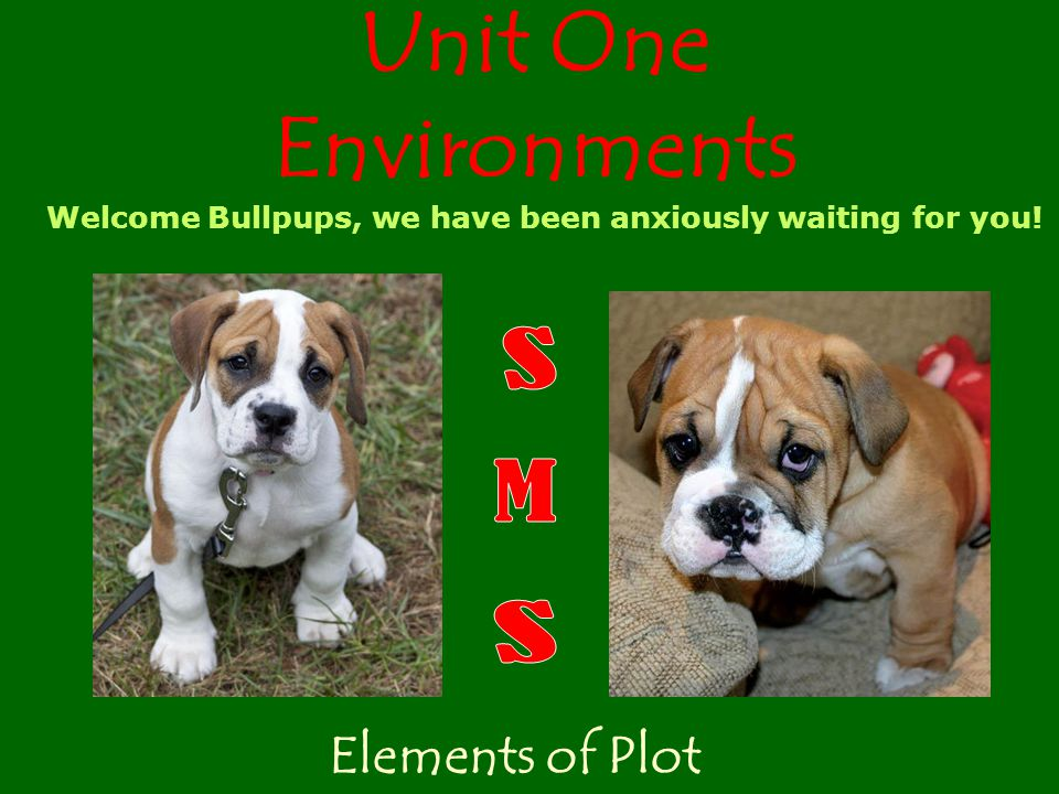 Unit One Environments Elements of Plot Welcome Bullpups, we have been anxiously waiting for you!