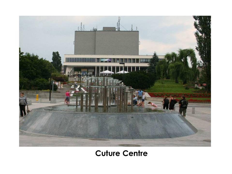 Cuture Centre