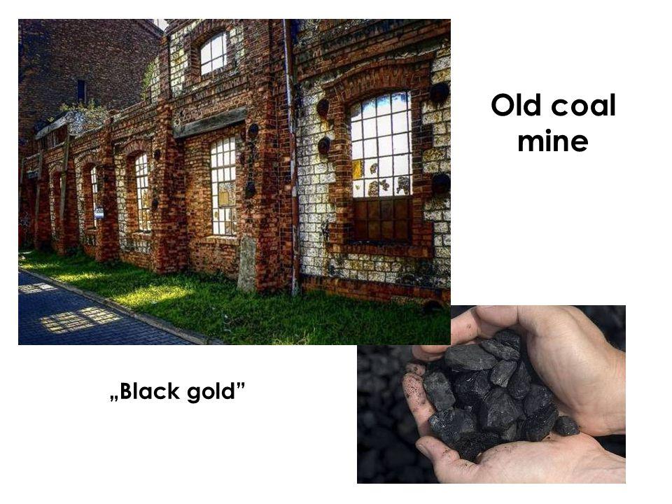 """Black gold Old coal mine"