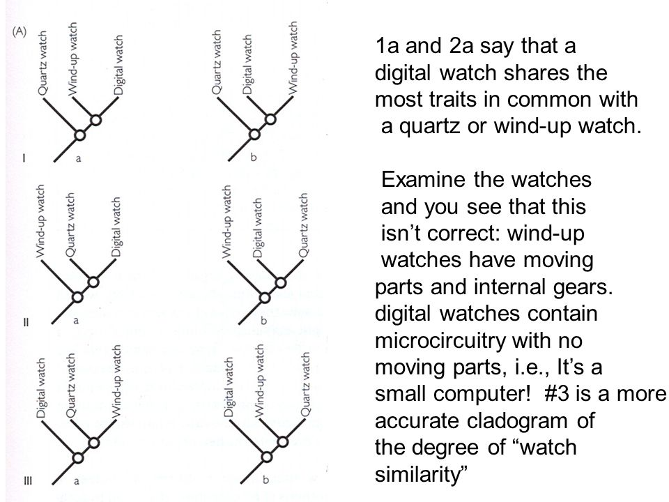 1a and 2a say that a digital watch shares the most traits in common with a quartz or wind-up watch. Examine the watches and you see that this isn't co