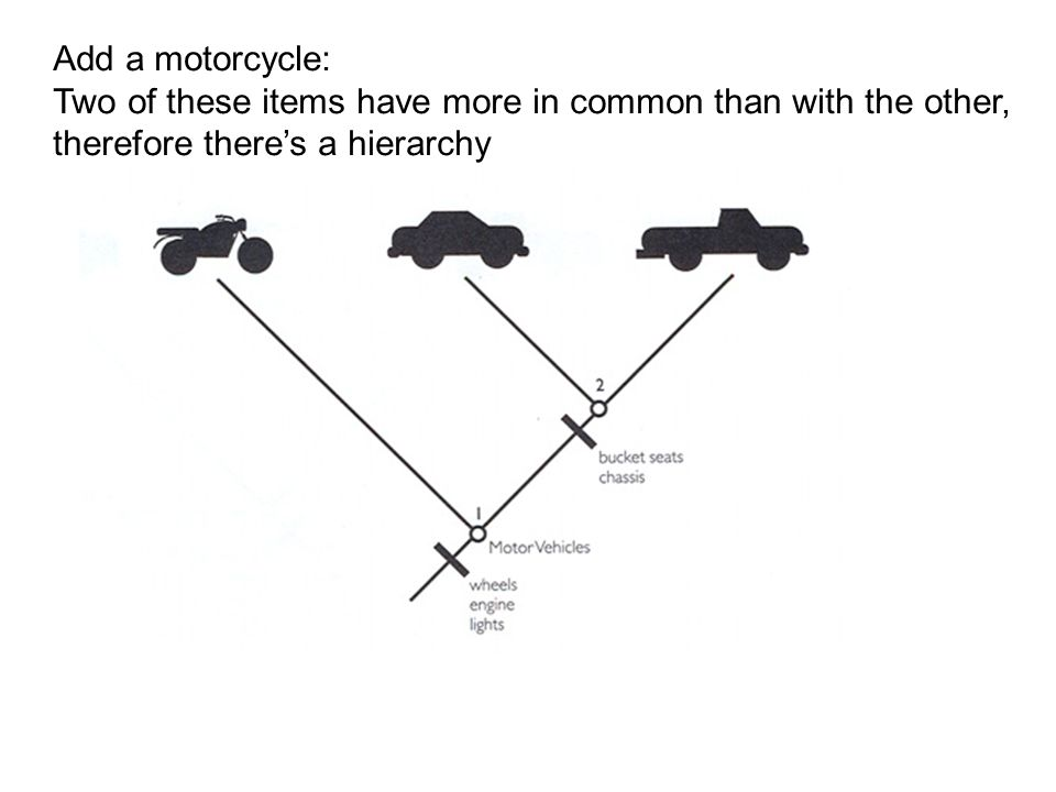 Add a motorcycle: Two of these items have more in common than with the other, therefore there's a hierarchy