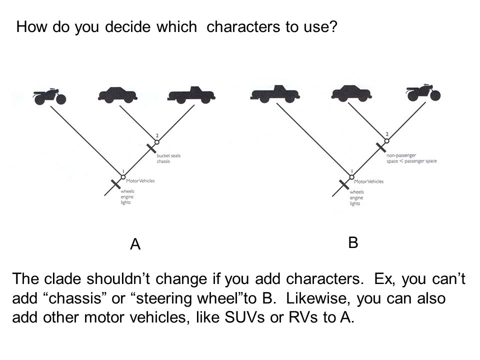 """How do you decide which characters to use? The clade shouldn't change if you add characters. Ex, you can't add """"chassis"""" or """"steering wheel""""to B. Like"""
