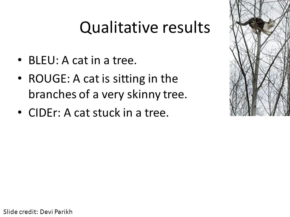 Qualitative results BLEU: A cat in a tree. ROUGE: A cat is sitting in the branches of a very skinny tree. CIDEr: A cat stuck in a tree. Slide credit: