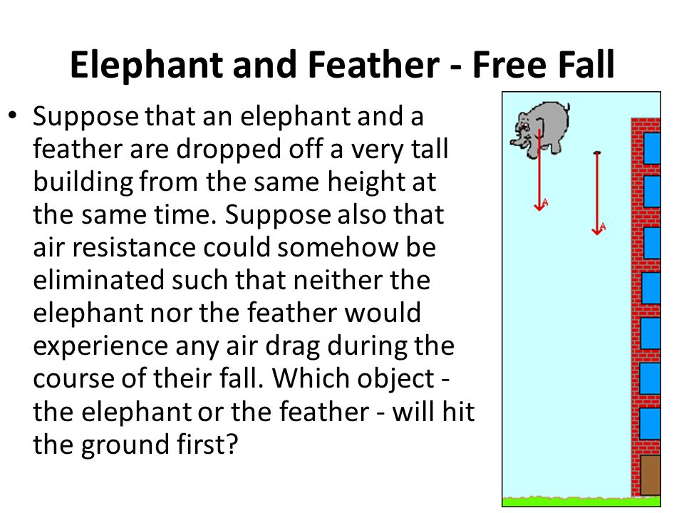 Elephant and Feather - Free Fall Suppose that an elephant and a feather are dropped off a very tall building from the same height at the same time.
