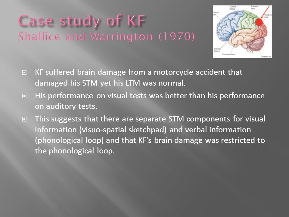  KF suffered brain damage from a motorcycle accident that damaged his STM yet his LTM was normal.