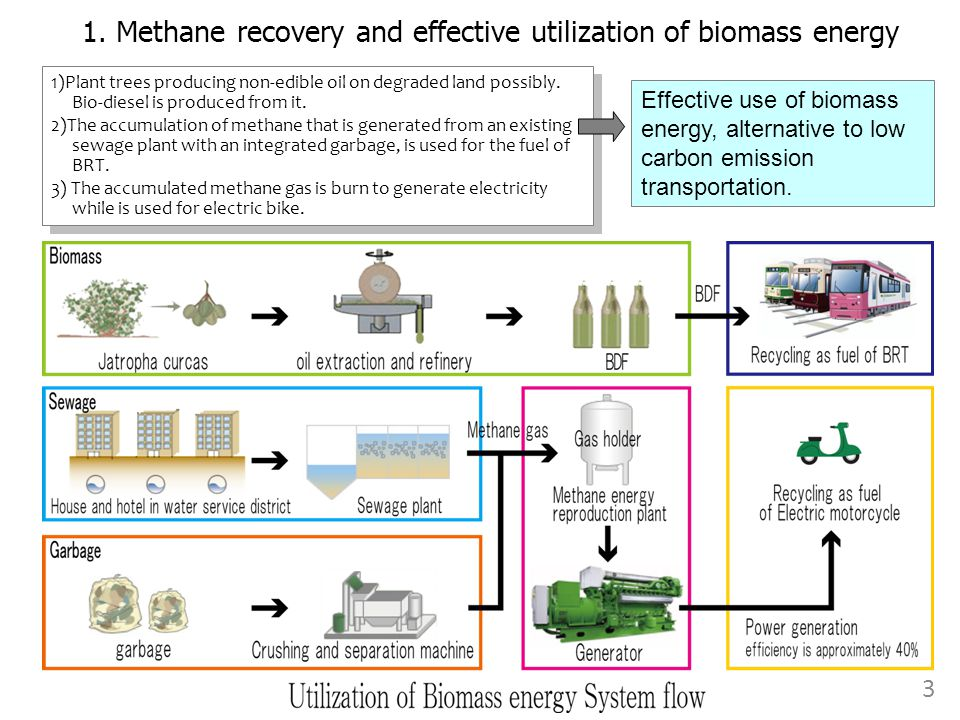 1. Methane recovery and effective utilization of biomass energy 1)Plant trees producing non-edible oil on degraded land possibly. Bio-diesel is produc