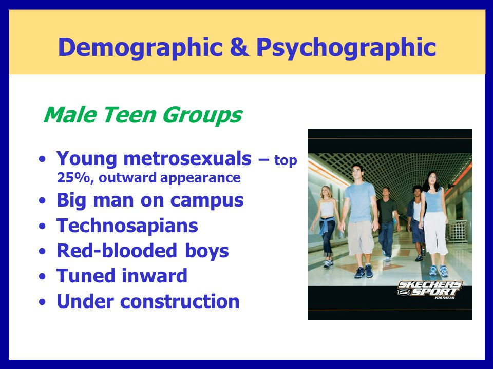 Demographic & Psychographic Young metrosexuals – top 25%, outward appearance Big man on campus Technosapians Red-blooded boys Tuned inward Under const