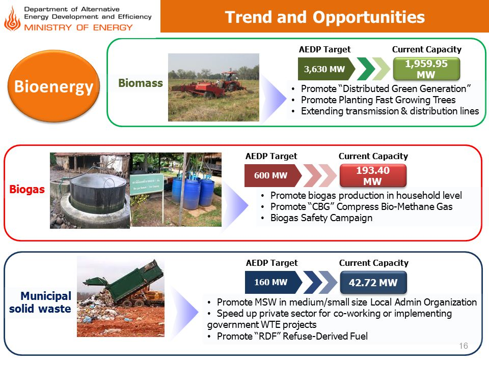 """Trend and Opportunities 1,959.95 MW 3,630 MW 16 Bioenergy AEDP TargetCurrent Capacity Biomass Promote """"Distributed Green Generation"""" Promote Planting"""
