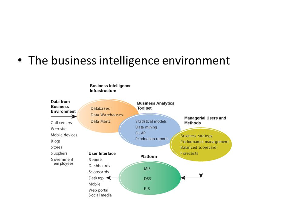 The business intelligence environment