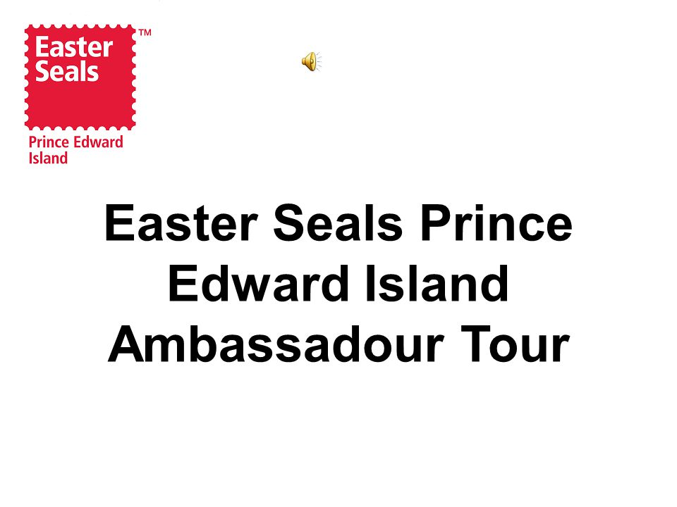 Our Mission The Easter Seals Society of PEI is committed to fully enhancing the quality of life, self esteem and self determination of Islanders with disabilities.