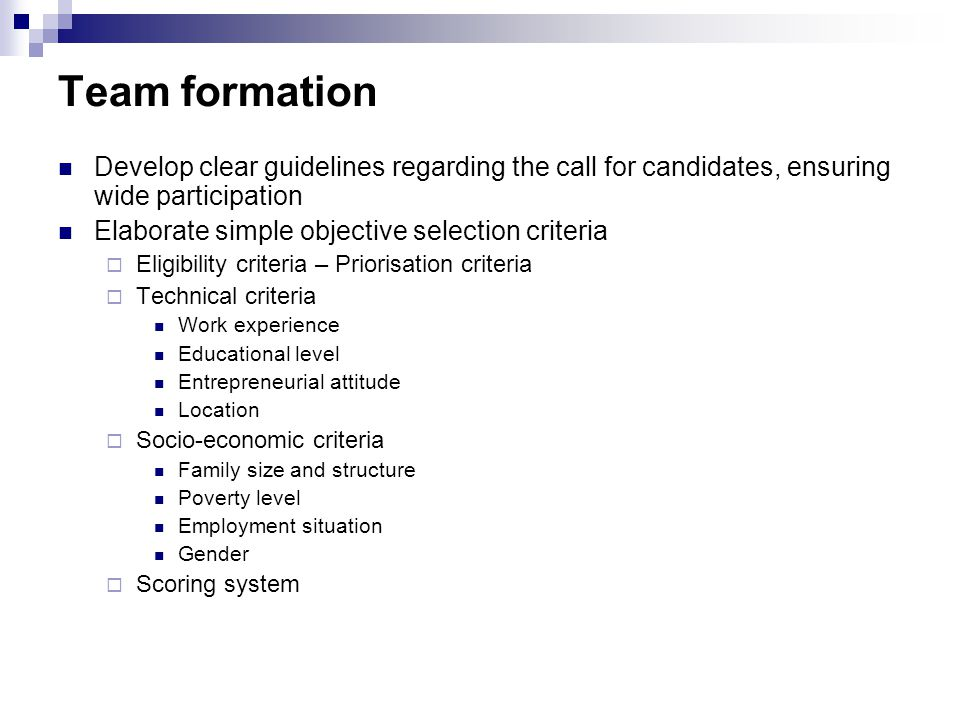 Team formation Develop clear guidelines regarding the call for candidates, ensuring wide participation Elaborate simple objective selection criteria  Eligibility criteria – Priorisation criteria  Technical criteria Work experience Educational level Entrepreneurial attitude Location  Socio-economic criteria Family size and structure Poverty level Employment situation Gender  Scoring system