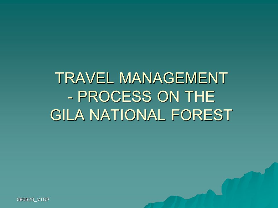 080820_v1DP TRAVEL MANAGEMENT - PROCESS ON THE GILA NATIONAL FOREST