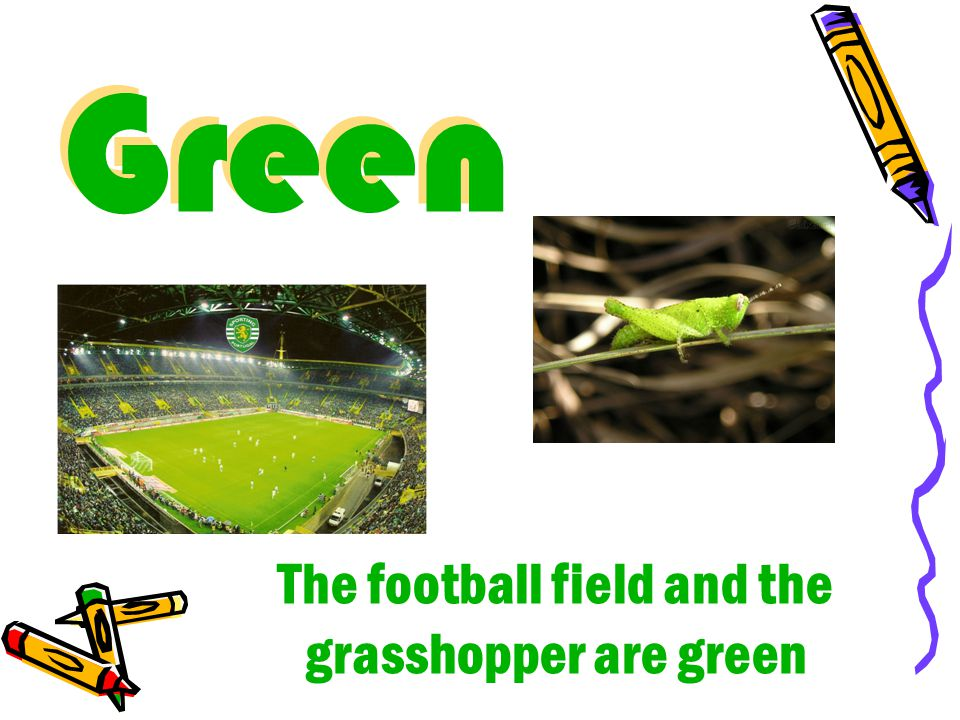 Green Green The football field and the grasshopper are green