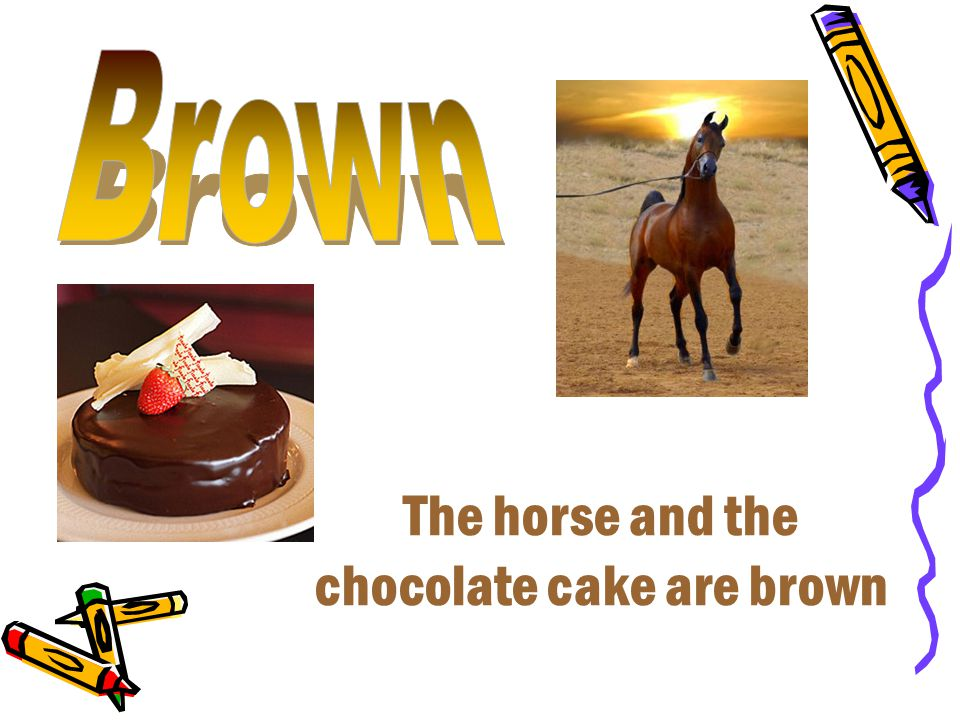 The horse and the chocolate cake are brown