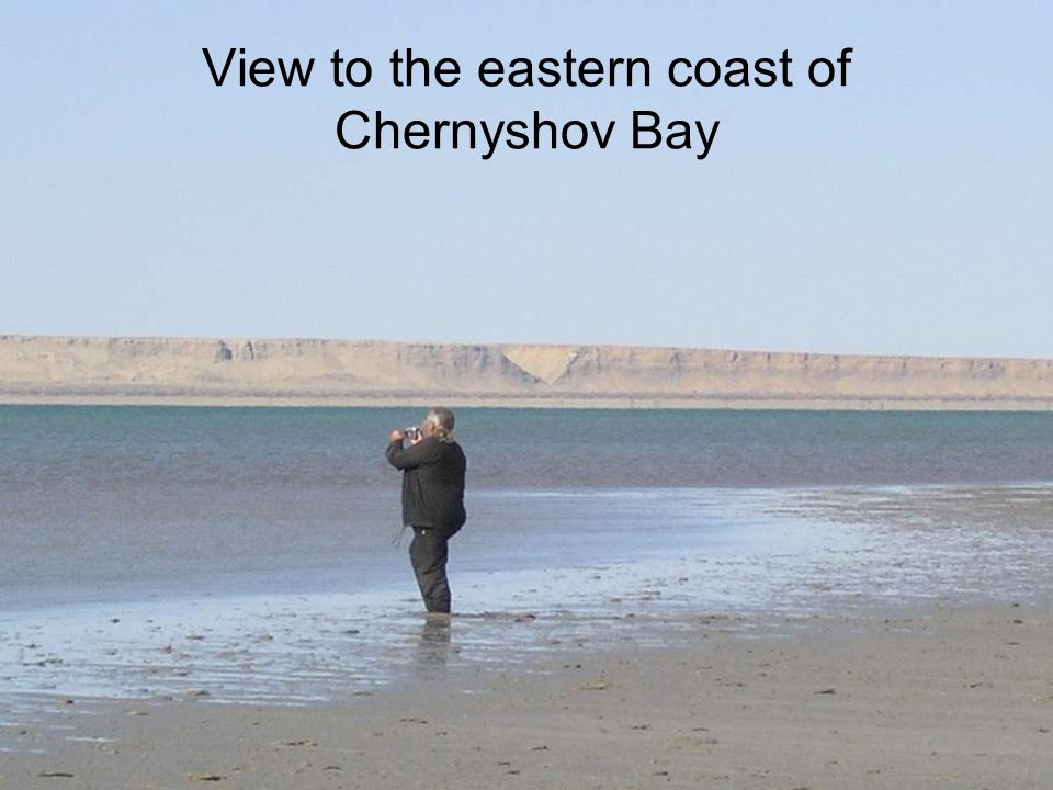 View to the eastern coast of Chernyshov Bay