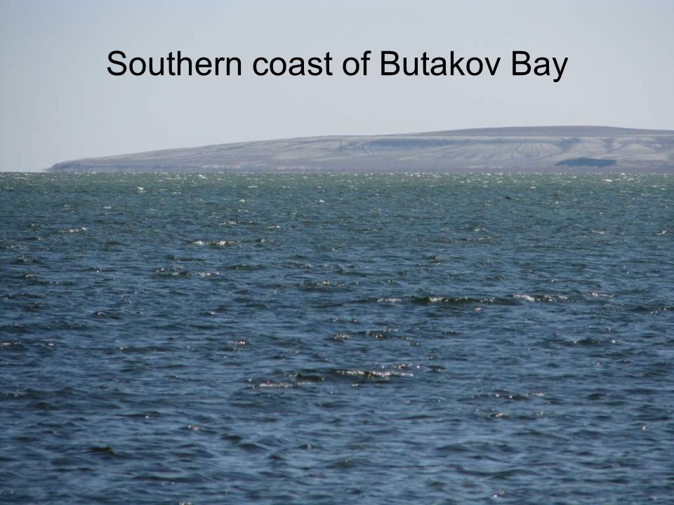 Southern coast of Butakov Bay