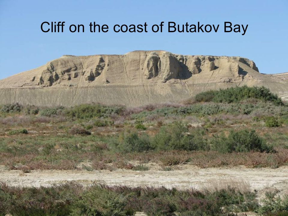 Cliff on the coast of Butakov Bay