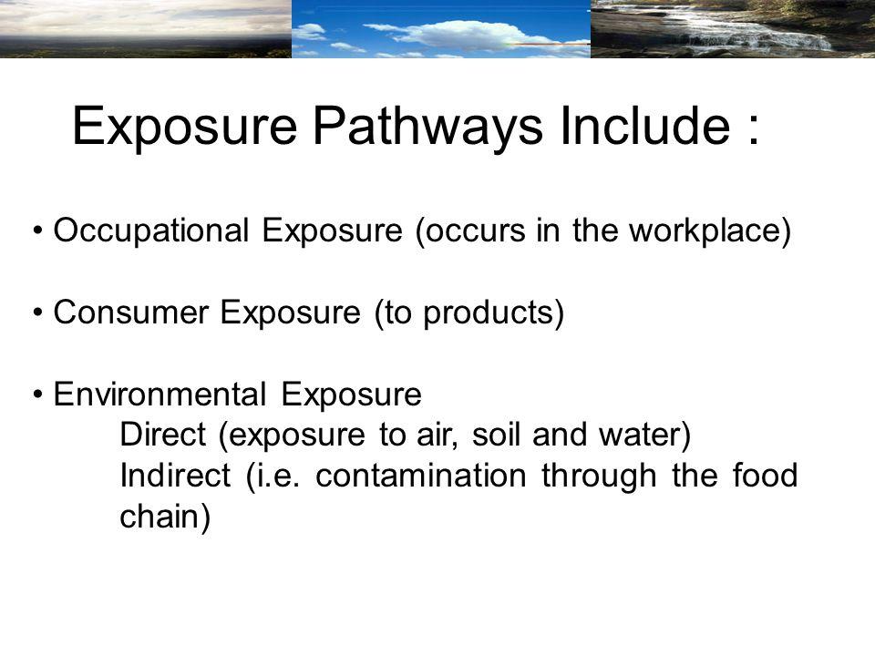 Source:http://www.chem.unep.ch/irptc/Publications/riskasse/A2A4Txtab.PDF Indirect Environmental Exposure Indirect Exposure Pathways