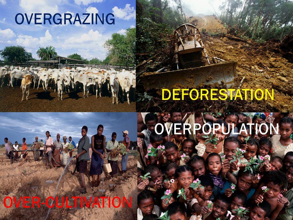 OVERGRAZING DEFORESTATION OVER-CULTIVATION OVERPOPULATION