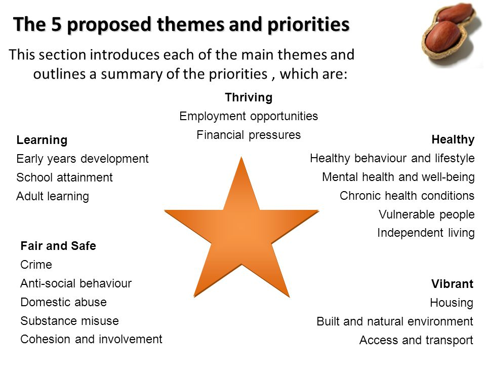 Healthy Healthy behaviour and lifestyle Mental health and well-being Chronic health conditions Vulnerable people Independent living The 5 proposed themes and priorities This section introduces each of the main themes and outlines a summary of the priorities, which are: Learning Early years development School attainment Adult learning Thriving Employment opportunities Financial pressures Vibrant Housing Built and natural environment Access and transport Fair and Safe Crime Anti-social behaviour Domestic abuse Substance misuse Cohesion and involvement