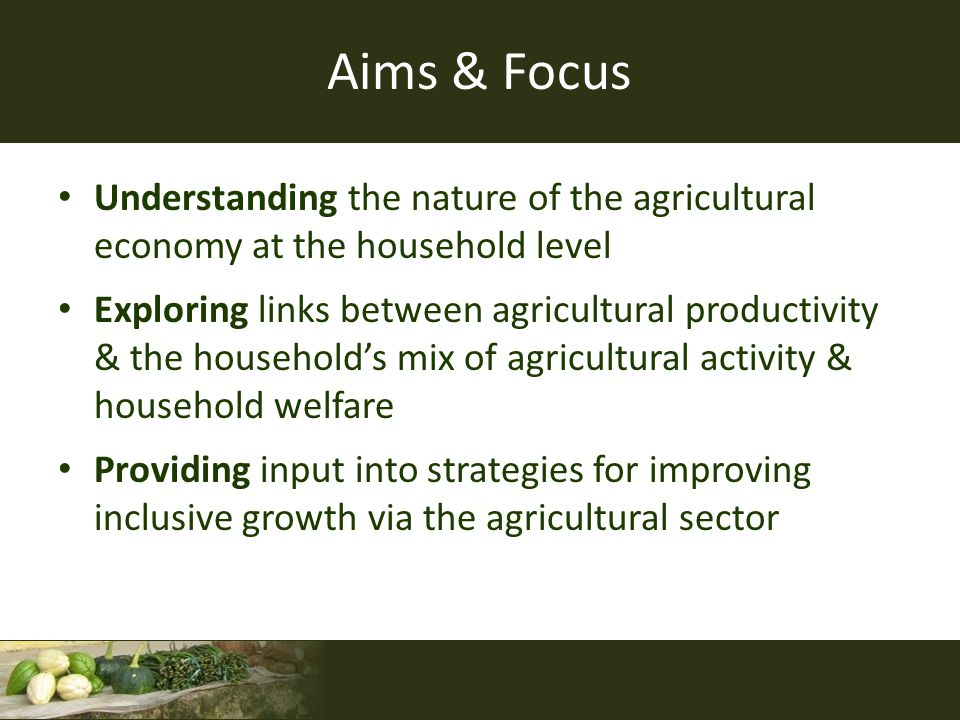 Aims & Focus Understanding the nature of the agricultural economy at the household level Exploring links between agricultural productivity & the house
