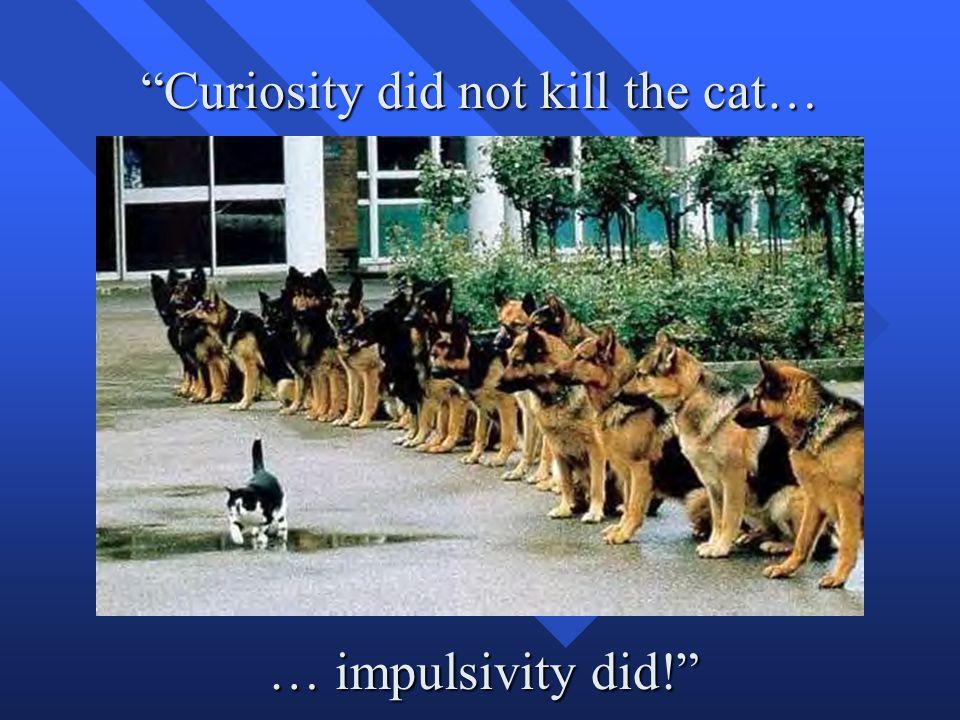 Curiosity did not kill the cat… … impulsivity did!
