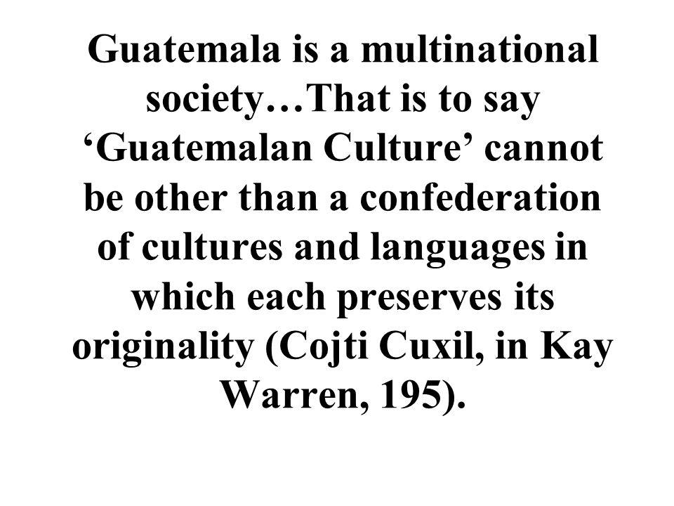 After the Violencia: Indigenous Activism Kay Warren Indigenous Movements and their Critics: Pan Mayan Activism in Guatemala (1998)