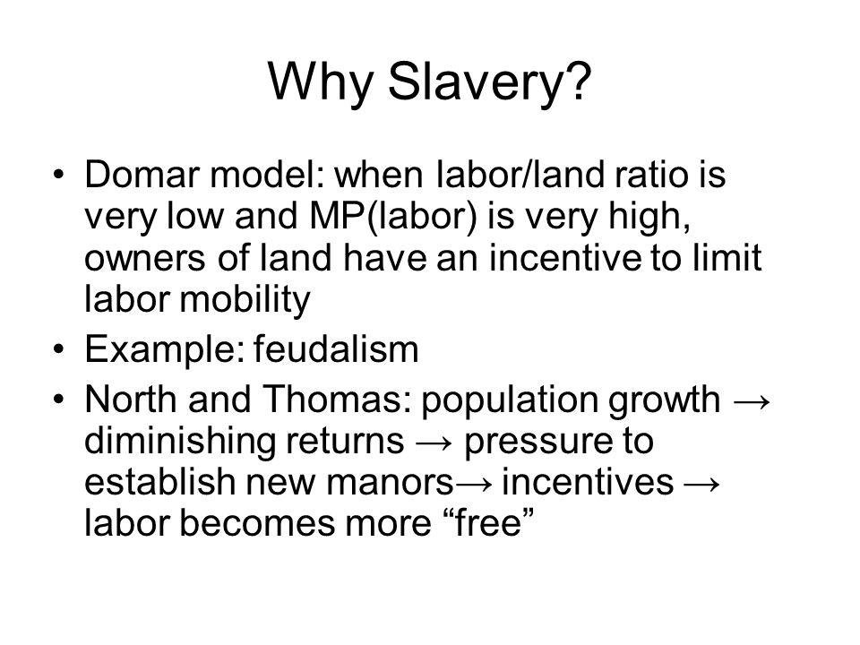 Why Slavery.
