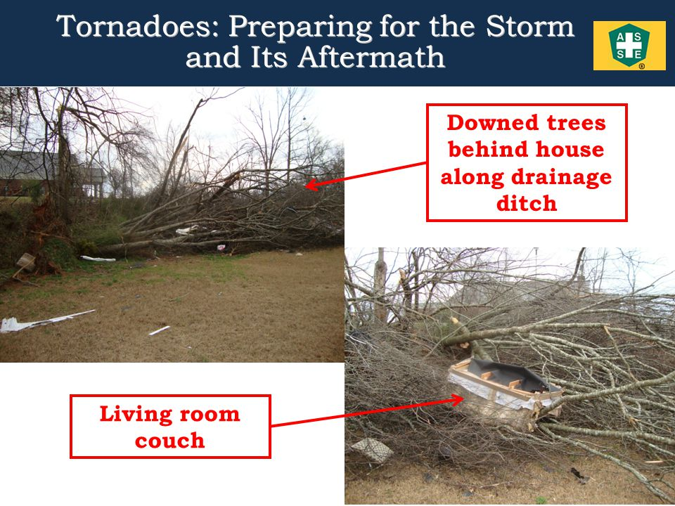 11 Tornadoes: Preparing for the Storm and Its Aftermath Downed trees behind house along drainage ditch Living room couch