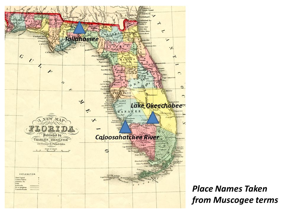 Place Names Taken from Muscogee terms Tallahassee Lake Okeechobee Caloosahatchee River