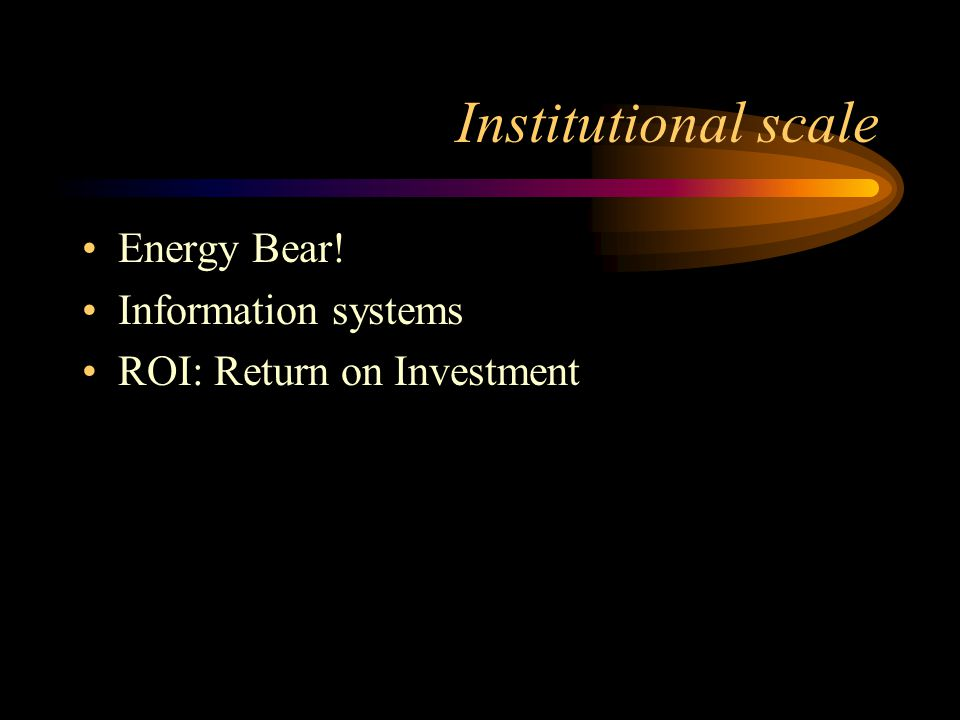 Institutional scale Energy Bear! Information systems ROI: Return on Investment