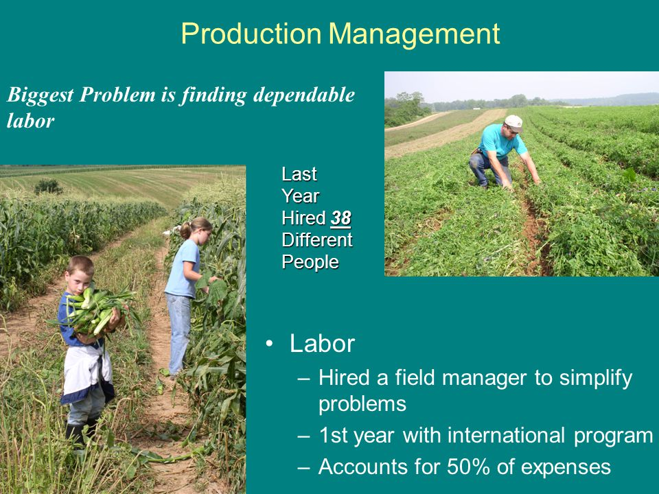 Production Management Labor –Hired a field manager to simplify problems –1st year with international program –Accounts for 50% of expenses Biggest Problem is finding dependable labor Last Year Hired 38 Different People