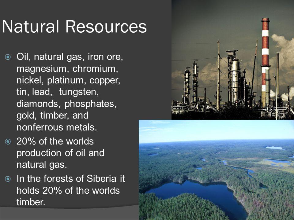 Natural Resources  Oil, natural gas, iron ore, magnesium, chromium, nickel, platinum, copper, tin, lead, tungsten, diamonds, phosphates, gold, timber, and nonferrous metals.