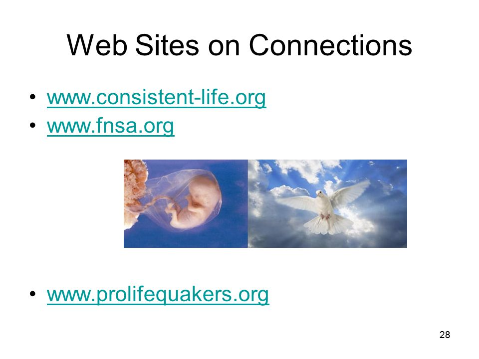 Web Sites on Connections www.consistent-life.org www.fnsa.org www.prolifequakers.org 28