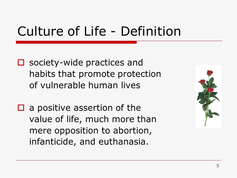 Culture of Life - Definition  society-wide practices and habits that promote protection of vulnerable human lives  a positive assertion of the value of life, much more than mere opposition to abortion, infanticide, and euthanasia.