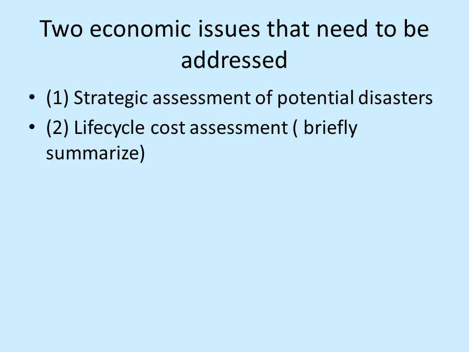 Two economic issues that need to be addressed (1) Strategic assessment of potential disasters (2) Lifecycle cost assessment ( briefly summarize)