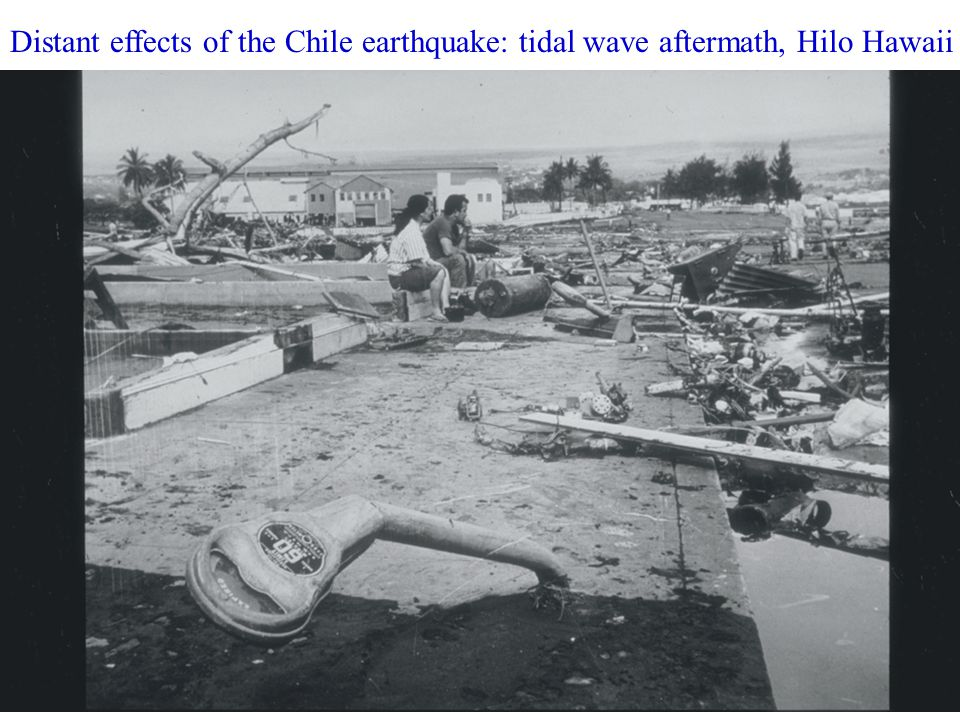 Distant effects of the Chile earthquake: tidal wave aftermath, Hilo Hawaii