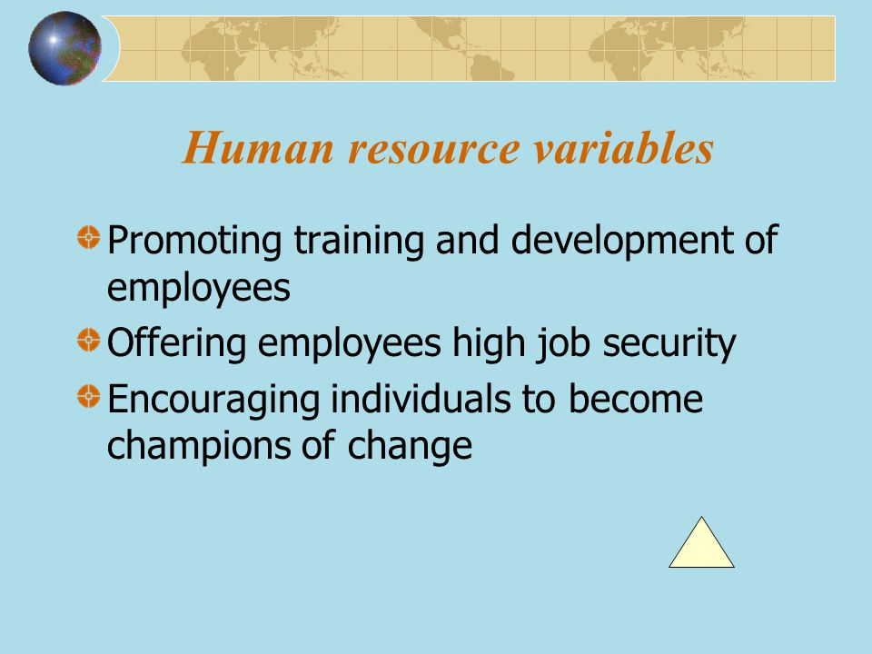 Promoting training and development of employees Offering employees high job security Encouraging individuals to become champions of change Human resou