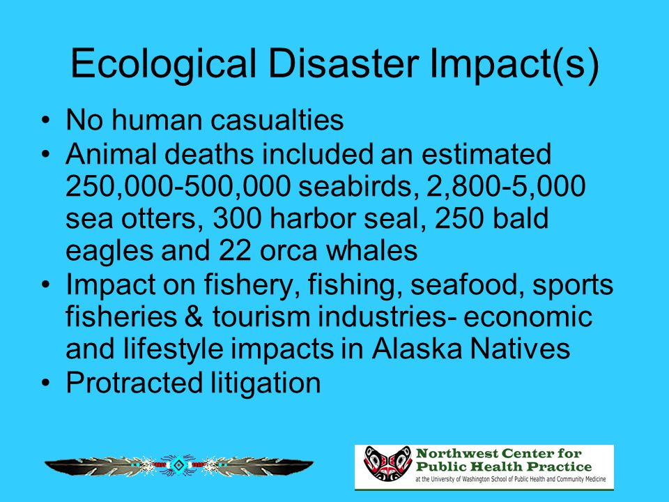 Ecological Disaster Impact(s) No human casualties Animal deaths included an estimated 250,000-500,000 seabirds, 2,800-5,000 sea otters, 300 harbor sea